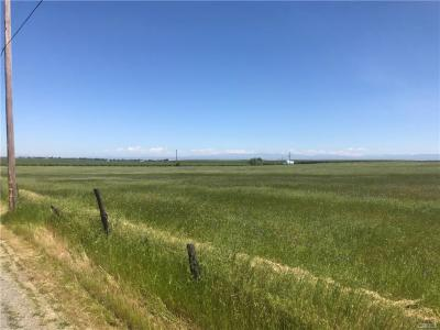 36.87 Acres - 0 Flournoy, Corning, CA - REDUCED to $345,000